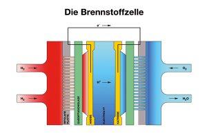 Schema einer Brennstoffzelle