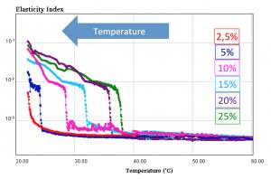 Rheolaser Parameter Software Abbildung 5