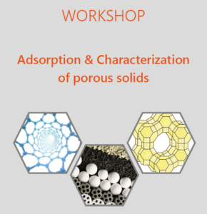 Workshop on Adsorption 2021